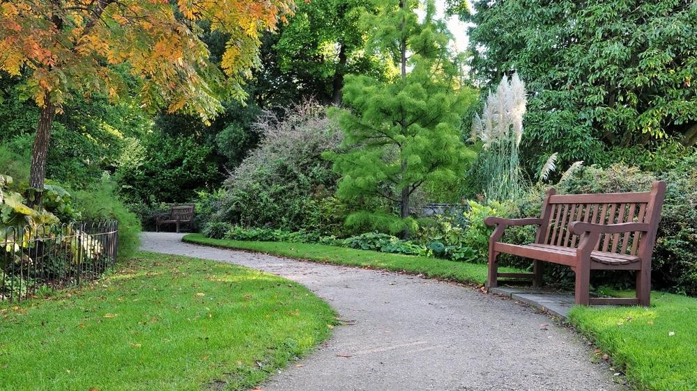 View Of A Peaceful Garden